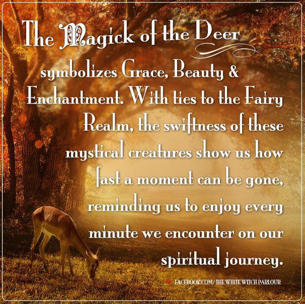 Animal Deer Totem Spirit Spiritual Symbolism Meaning Magick