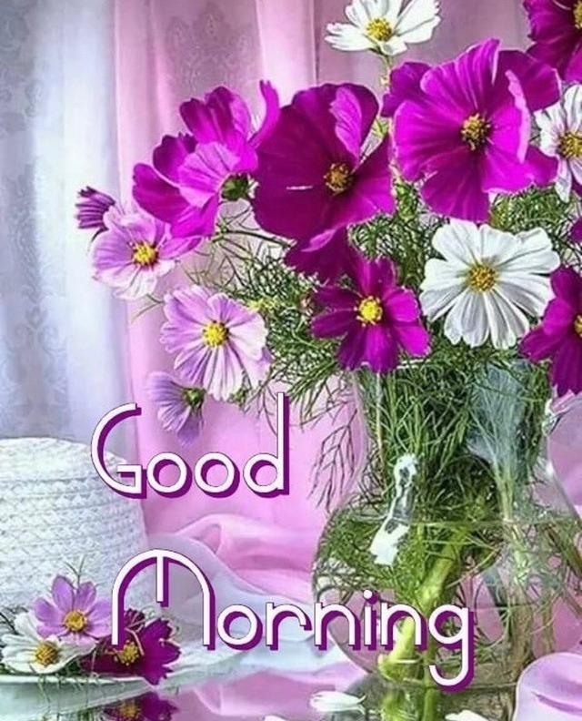 99 Tumblr Good Morning Flowers Good Morning Greetings Good Morning Cards