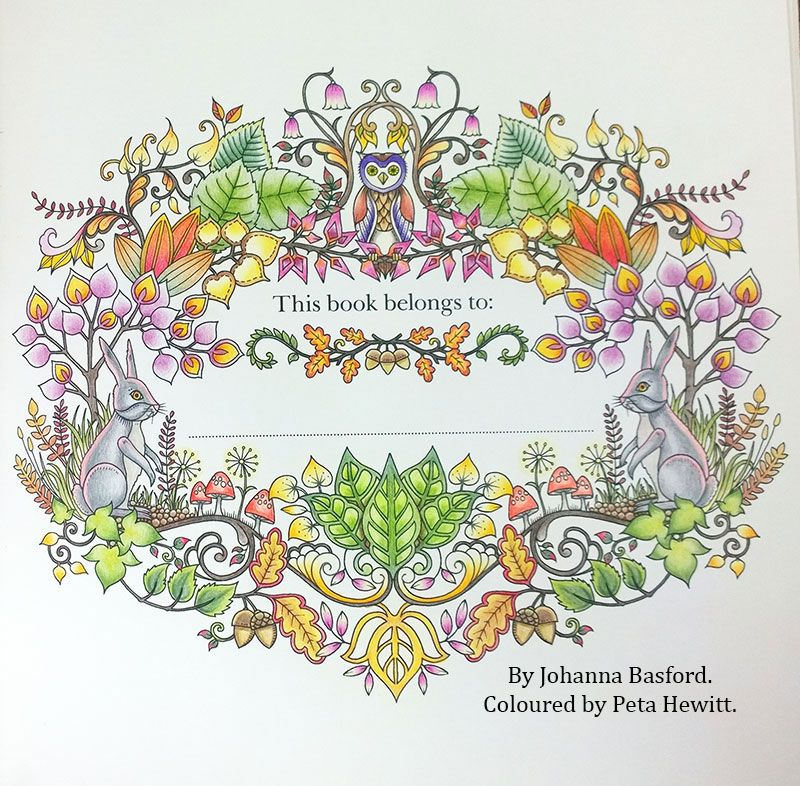 Enchanted Forest Johanna Basford Coloured By Peta Hewitt