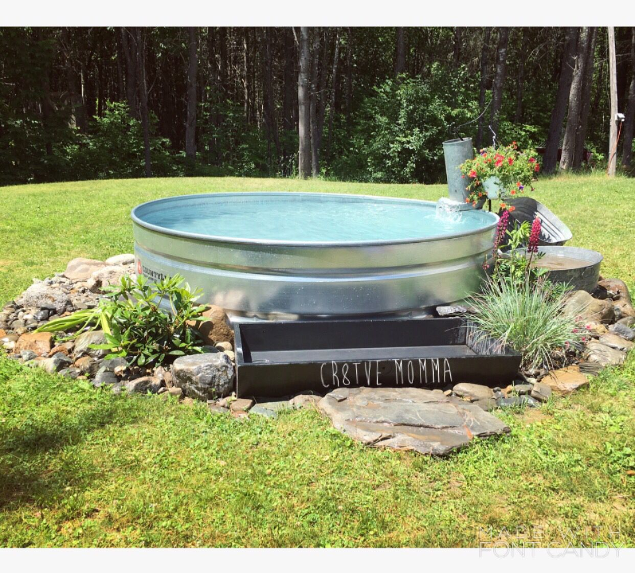 Stock tank swimming pool with salt water system piped back for Chicken in swimming pool