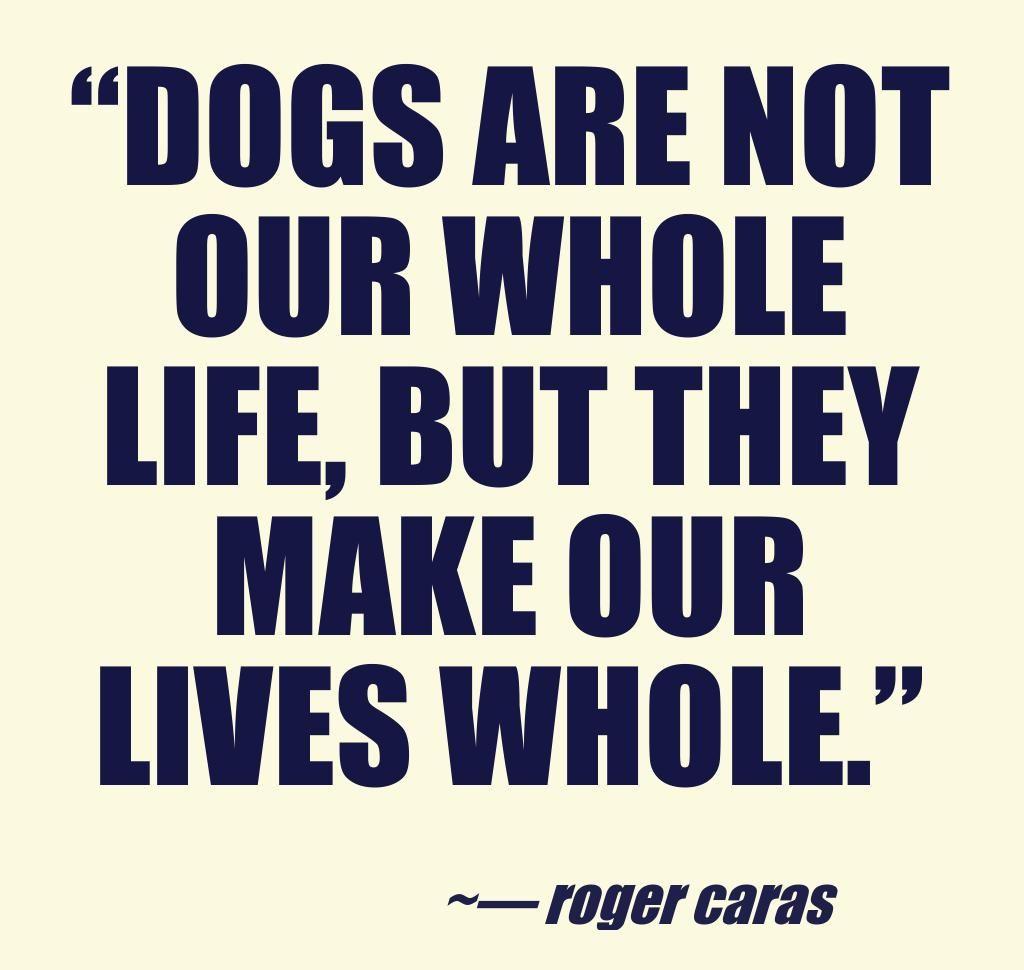 DOG LOVER!!!
