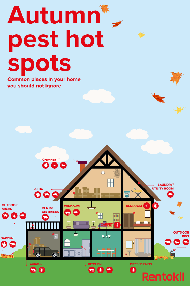 Check Out Our Free Guide To Preventing Your Home And Garden From Autumn And  Winter Pests