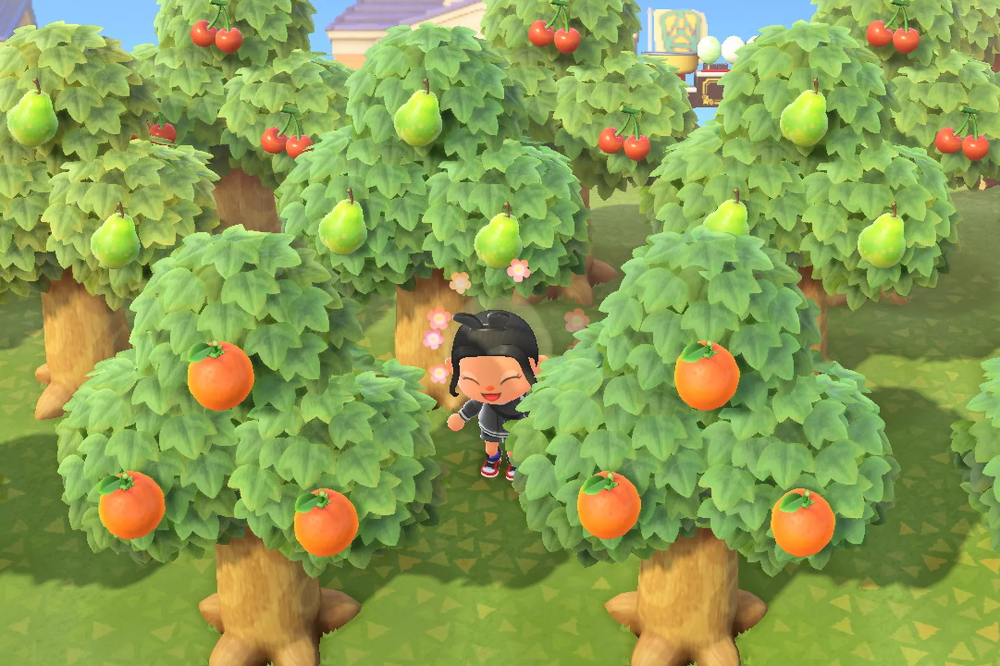 Animal Crossing New Horizons Switch Tree Guide Polygon Planting Fruit Trees Growing Cherry Trees How To Grow Cherries