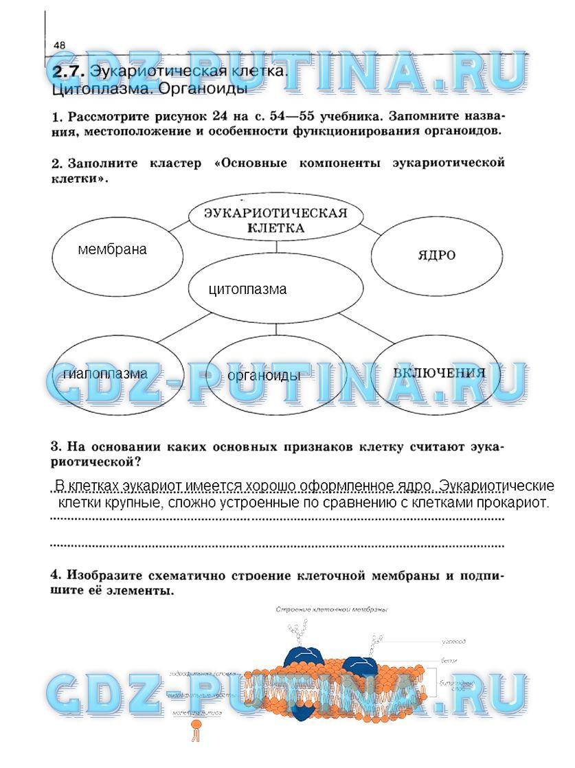 поурочные разработки по русскому языку 2 класс пнш скачать