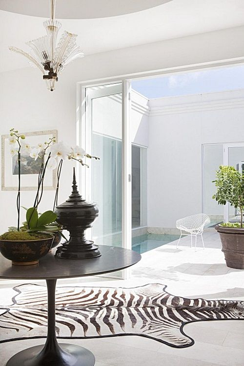 The 25 best zebra skin rug ideas on pinterest zebra for Living room ideas with zebra rug