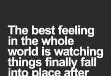 List of Most Downloaded Flirty Quotes Butterflies 2020 by hallofquotes.com