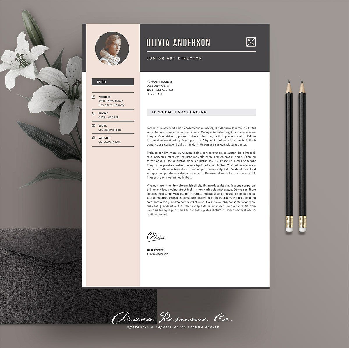 Professional Resume Template RE004 Resume template