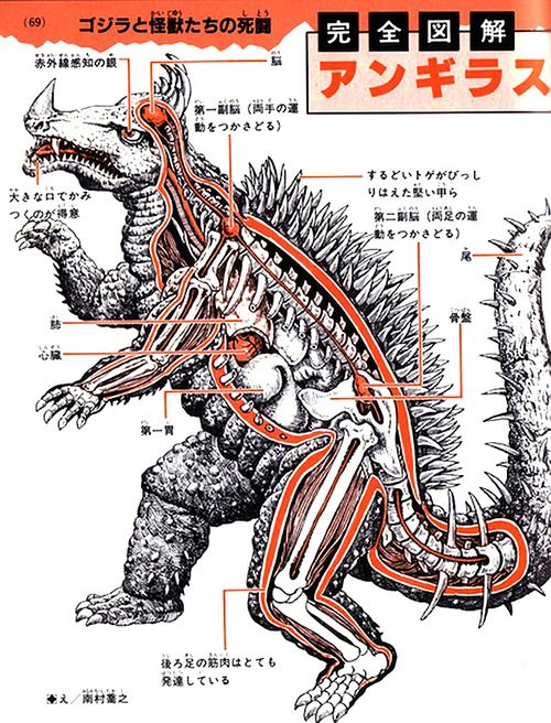 An Anatomical Guide to Monsters (1967).
