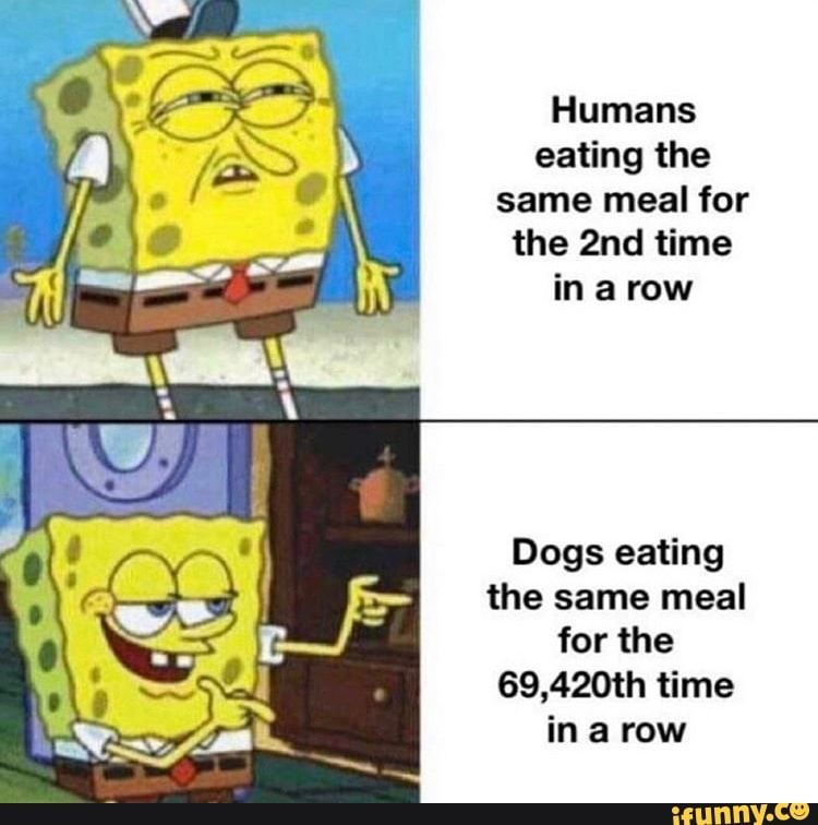 Picture memes vY9rQ9J37: 18 comments — iFunny