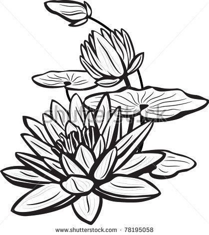 Sketch Of Lotus Flowers Stock Vector 78195058 Shutterstock Lukisan Bunga Bunga Teratai Lukisan Seni