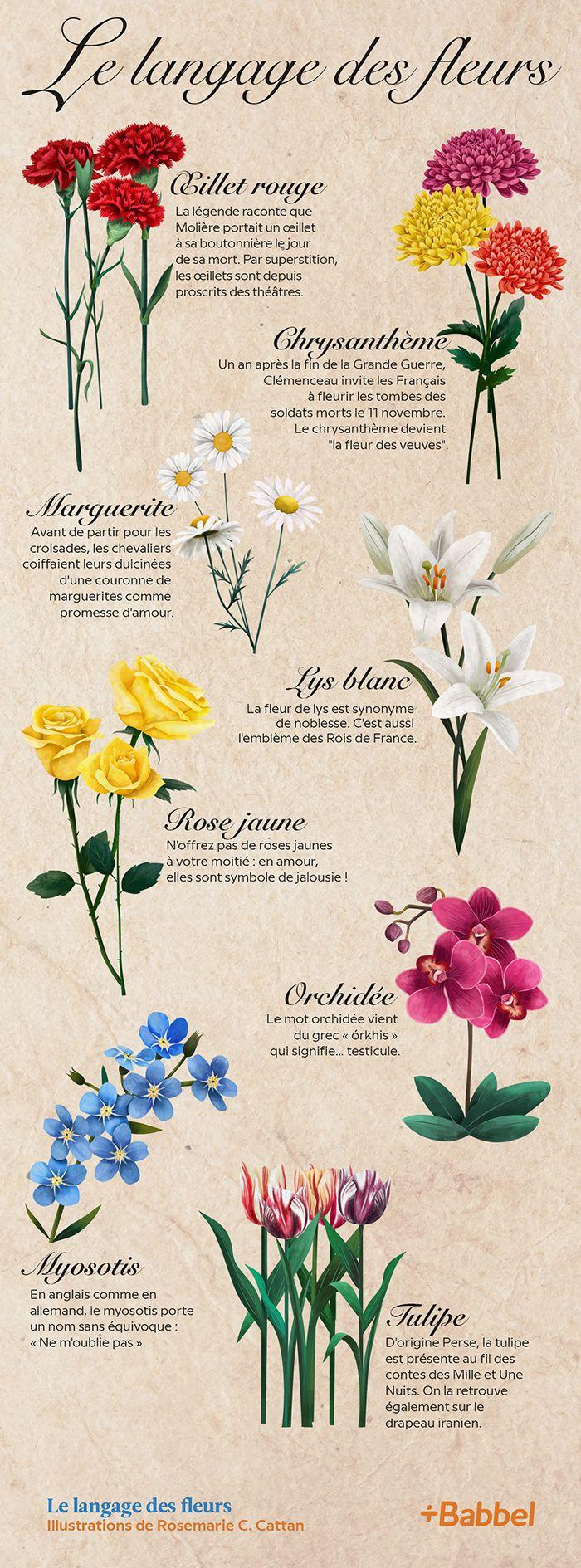 Dites Le Avec Des Fleurs Et Ne Vous Trompez Plus Decouvrez La