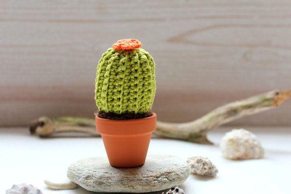 Mini Cactus hell grün mit Blume orange home dekor von ranitasart