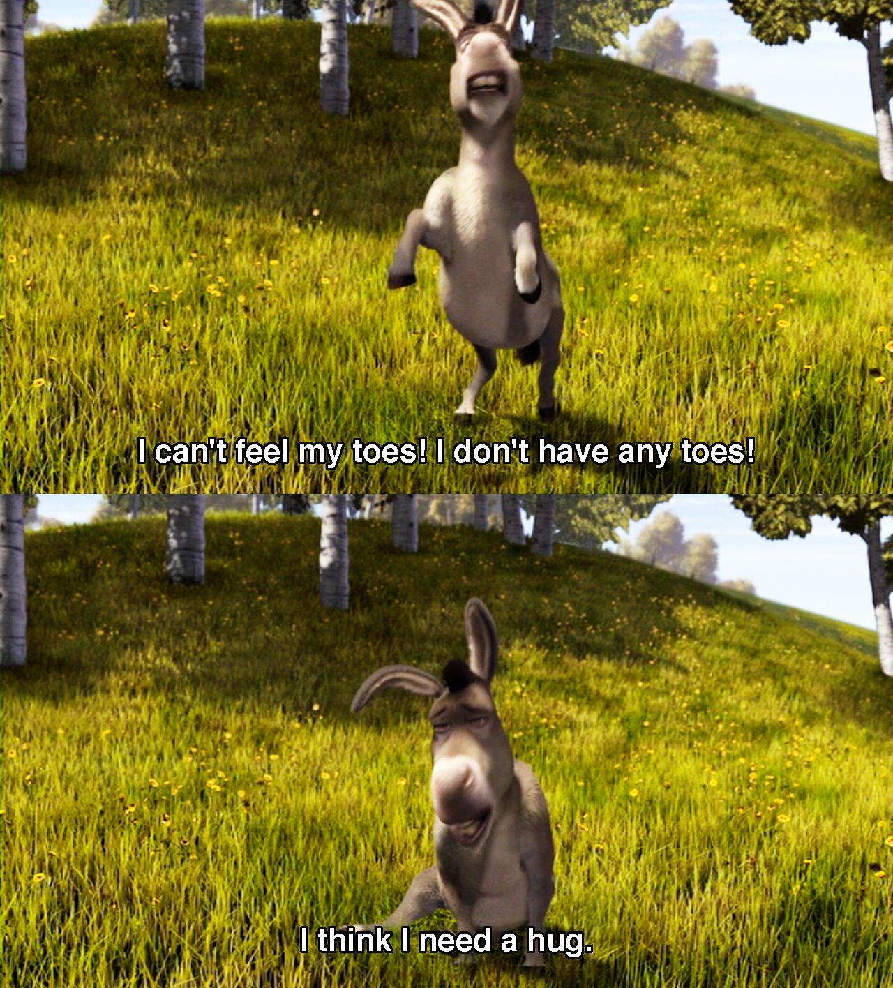 Donkey I Can T Feel My Toes I Don T Have Any Toes I Think I Need A Hug Donkey S Funny Line From Shrek Shrek Quotes Shrek Animated Movies