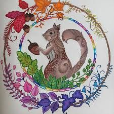 Image Result For Enchanted Forest Coloring Book Squirrel