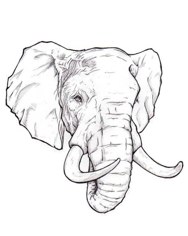 Résultat de recherche dimages pour tattoo elephant line drawings