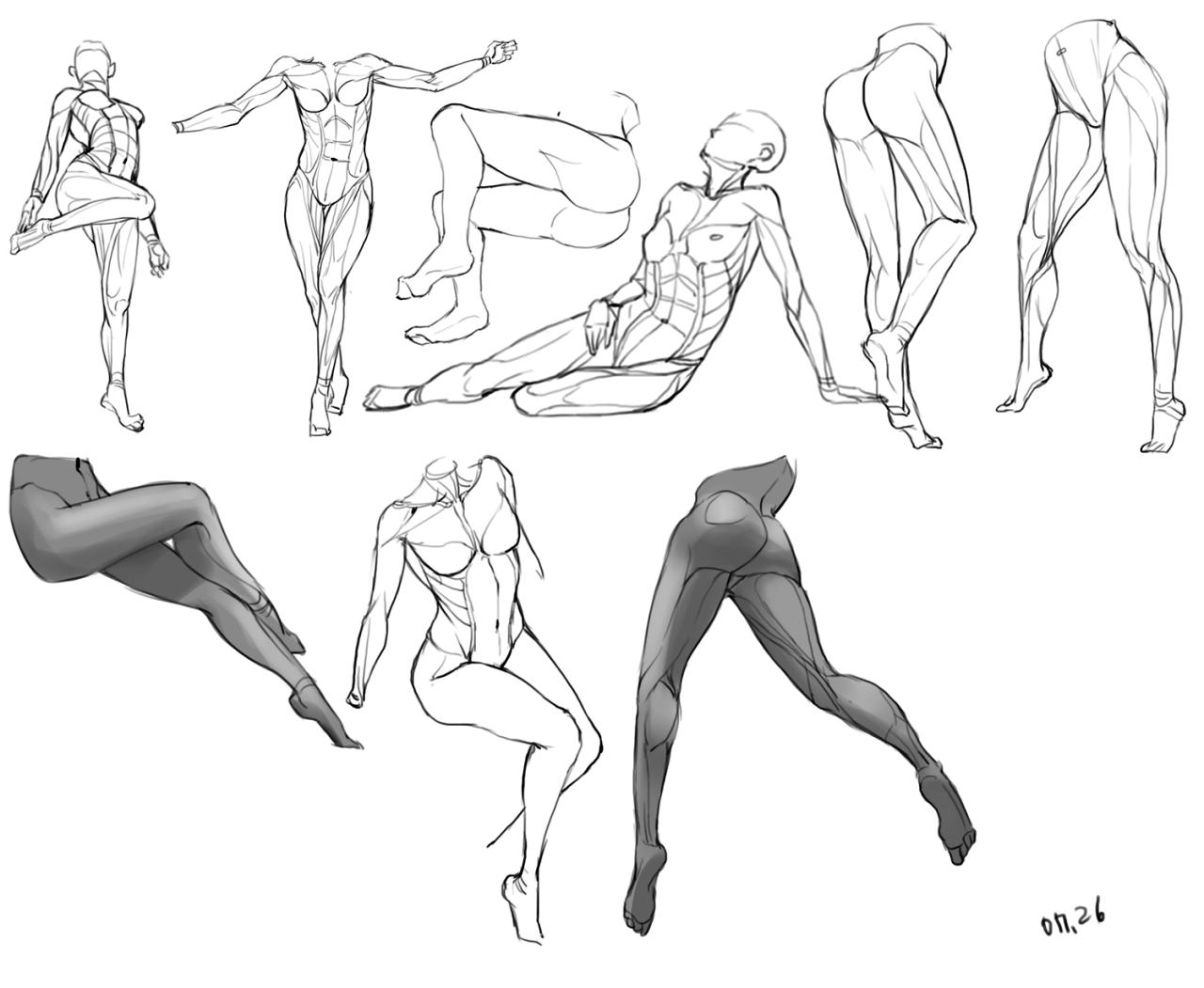 4 Tumblr Anatomy Life Drawing Pinterest Life Drawing