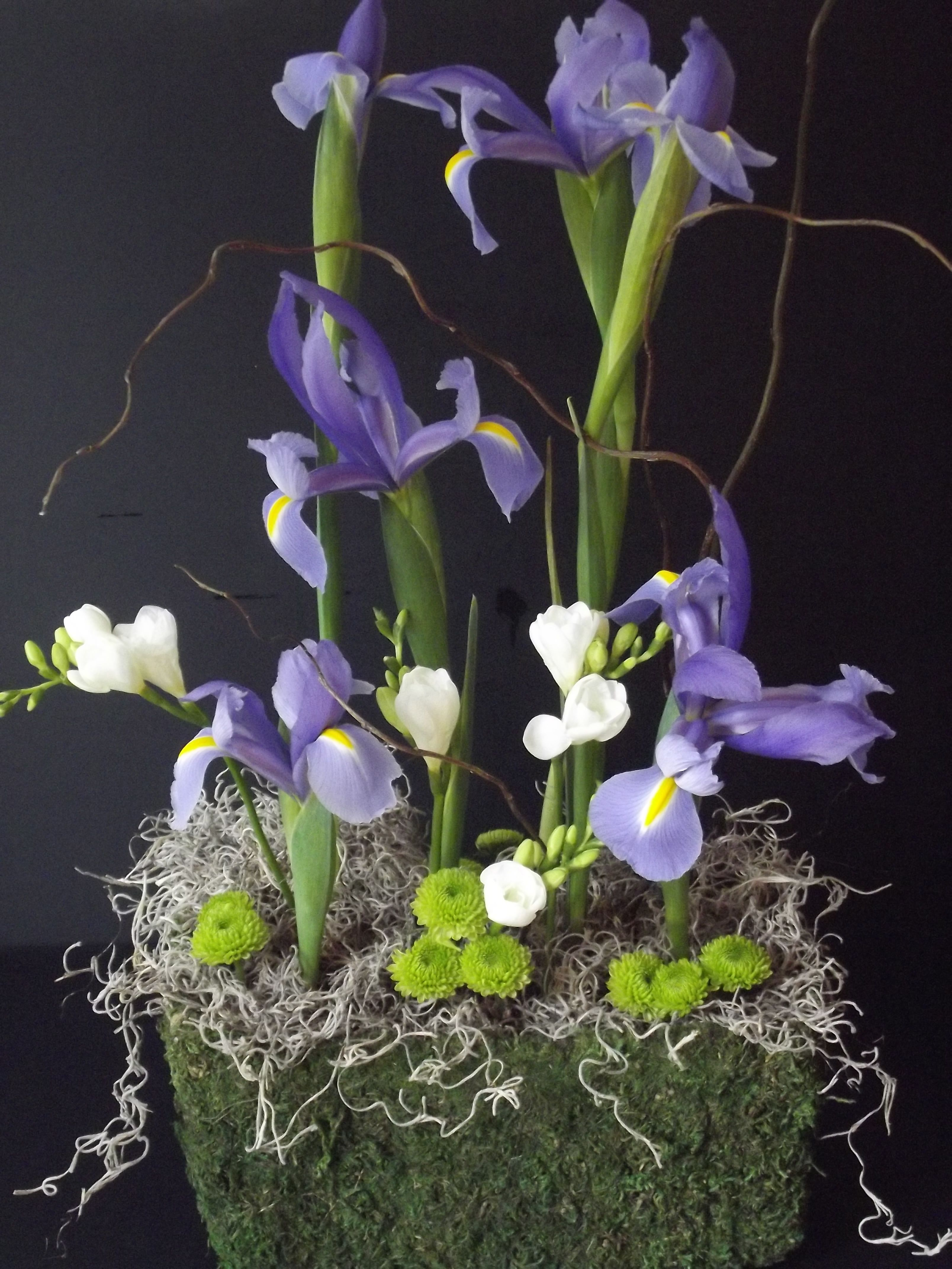 Asian Inspired Purple Iris By Greenfinch Floral Design Diseos