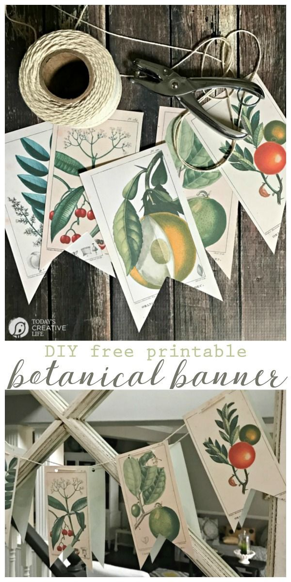 Info's : Free Printable Vintage Botanical Banner | Decorating with botanicals is easy with this DIY banner. Or frame them! Click on the photo for your free download. TodaysCreativeLife.com