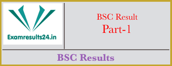 BSc 1st Year Result 2019 Check Online | Exam Results 24 in