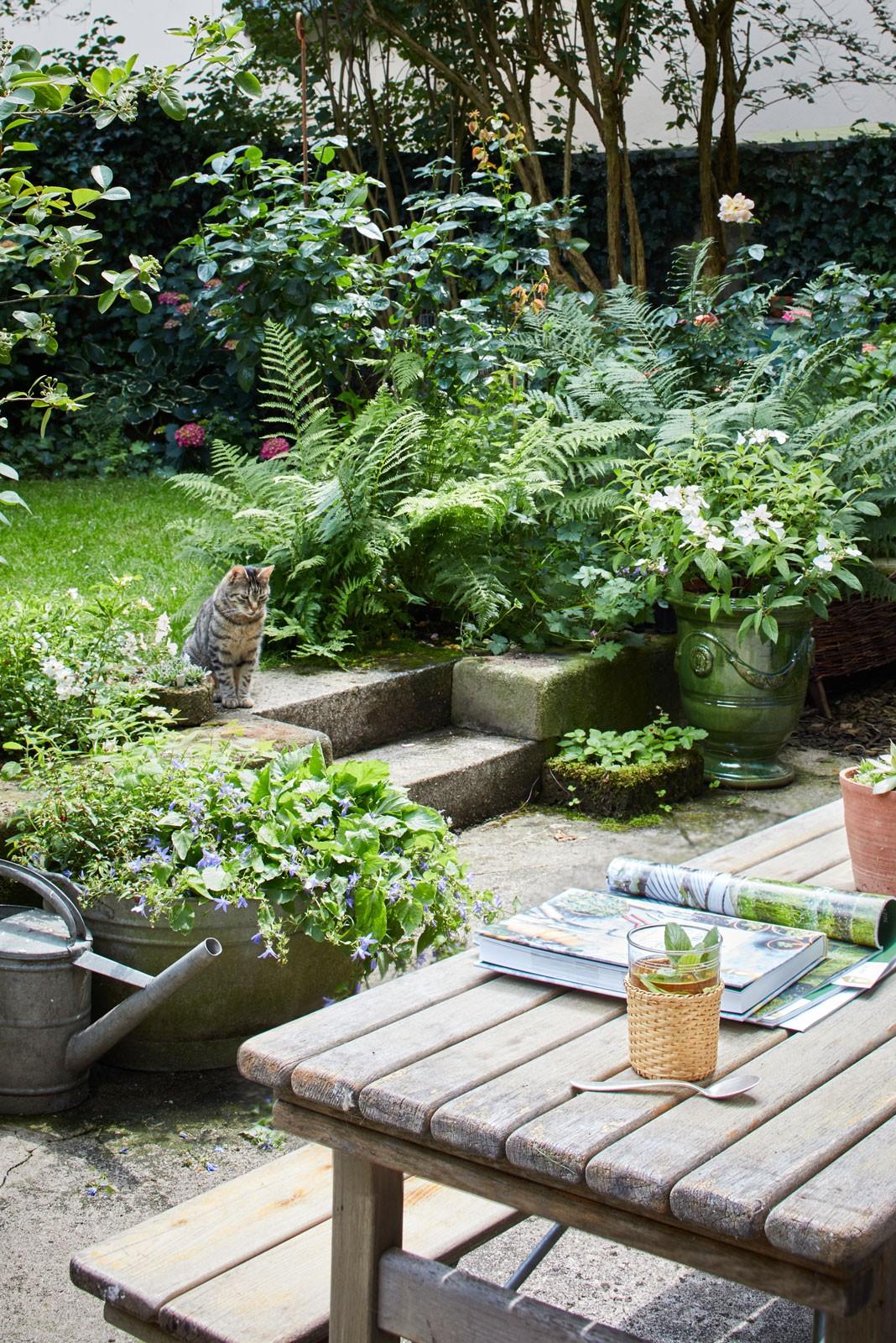 Schöner Schattengarten. #garten #homestory #hinterhof #hinterhofgarten #oase #hereinspaziert