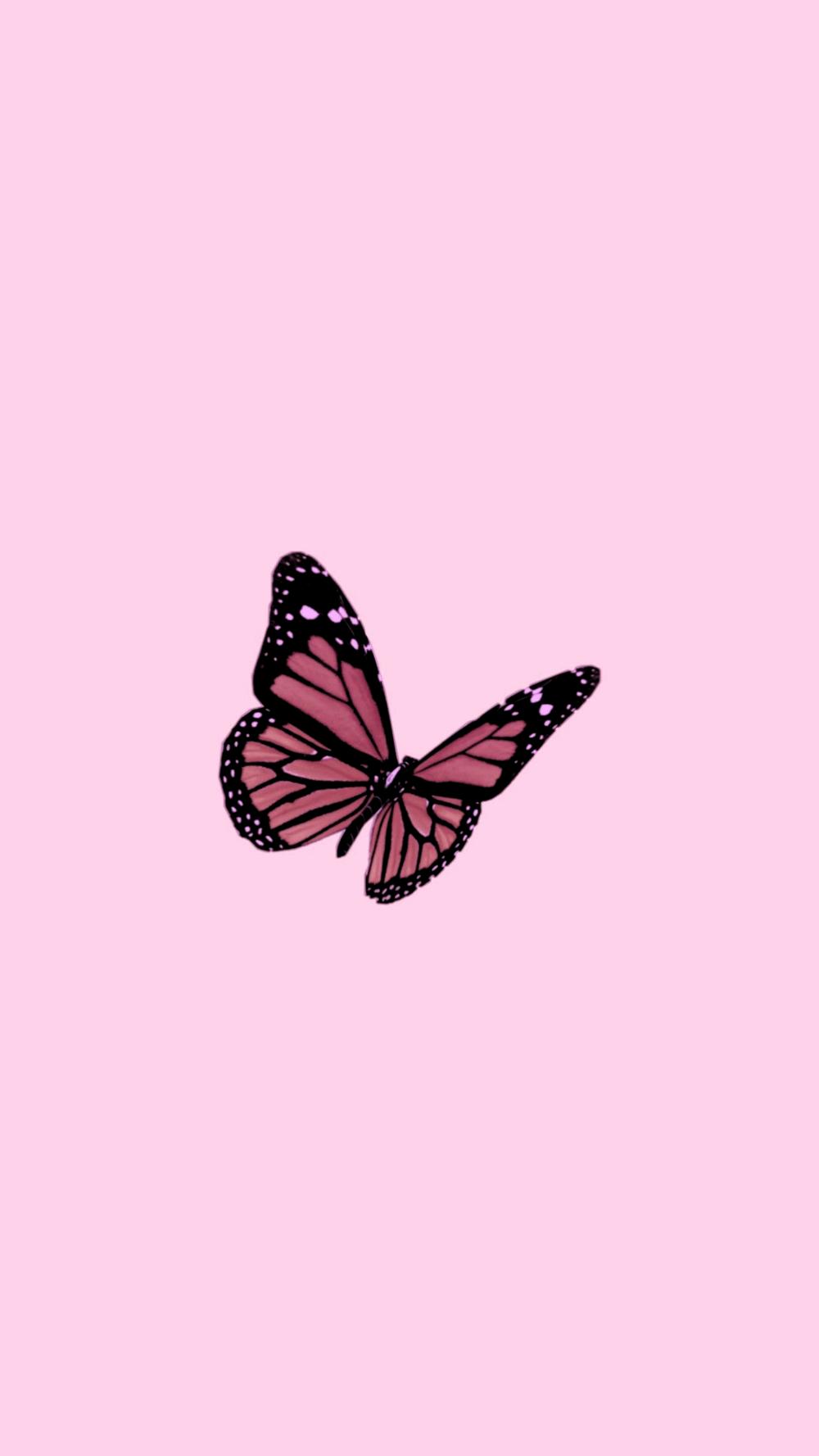 Iphone Rose Gold Aesthetic Tumblr Iphone Rose Gold Butterfly Wallpaper 686658274422981736 Butterfly Wallpaper Rose Gold Aesthetic Butterfly Wallpaper Iphone