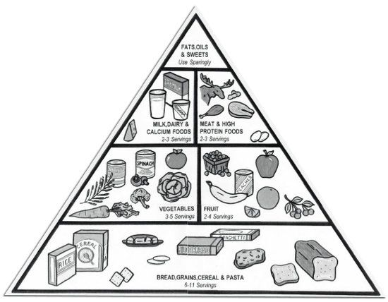 Foodpyramid Jpg 550 428 Food Pyramid Coloring Pages Food