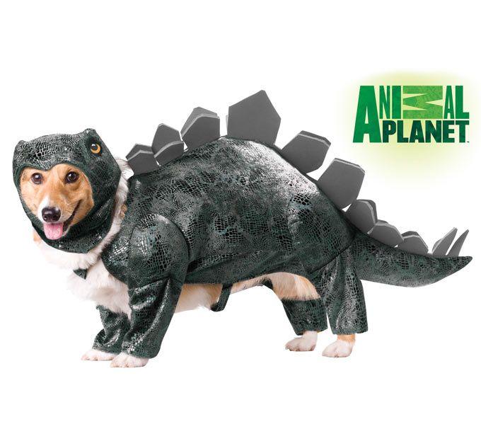Animal Planet Stegosaurus Pet Costume Pet Halloween Costumes