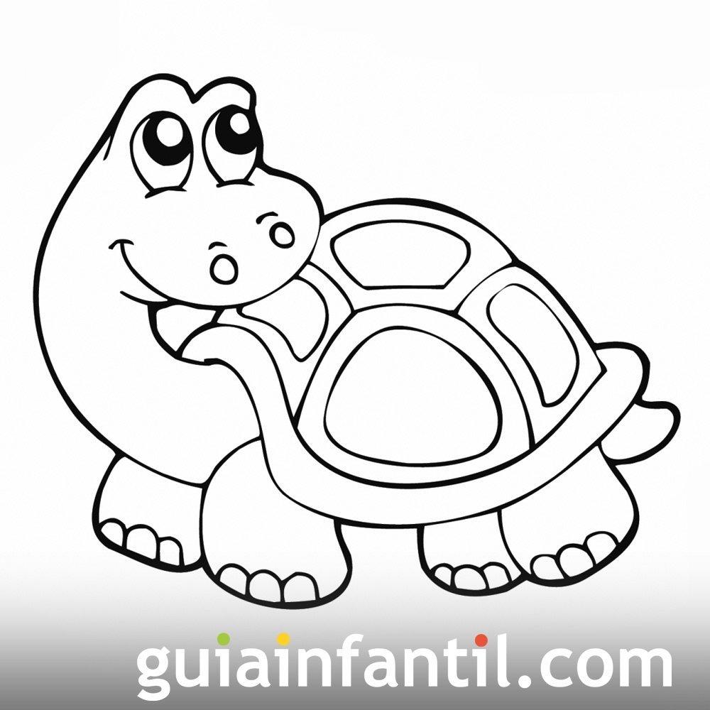 Pin De Cocos En Infantiles Tortuga Para Colorear Tortugas