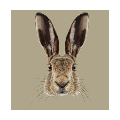 Illustrated Portrait of Hare Reprodukcje autor ant_art19 w AllPosters.pl