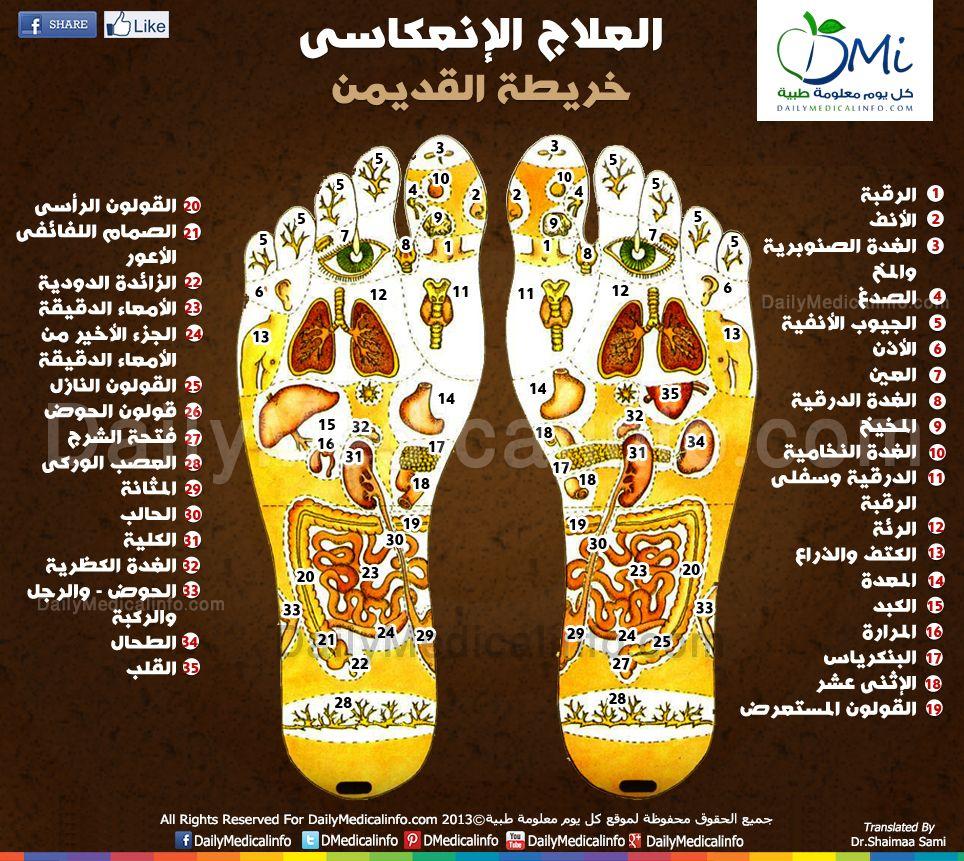 انفوجرافيك العلاج الإنعكاسى لخريطة القدمين Health Facts Fitness Infographic Health Health And Fitness Expo