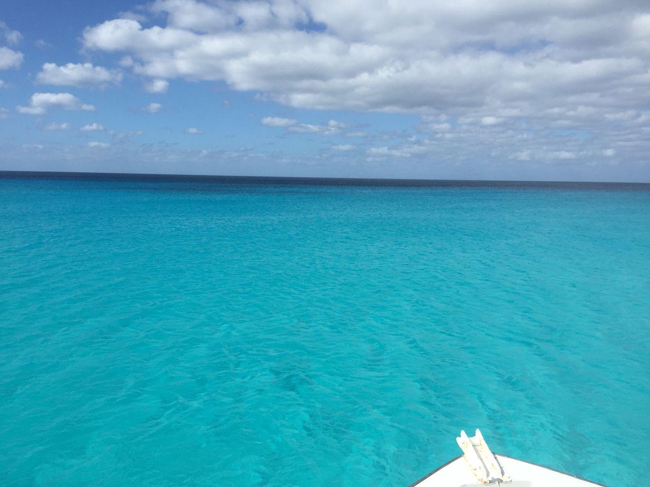 Bahamas club med plongée