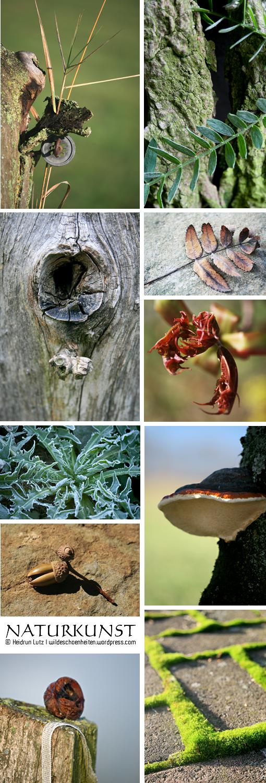 Kunstwerke von der #Natur geschaffen, #Naturkunst // wildeschoenheiten.wordpress.com