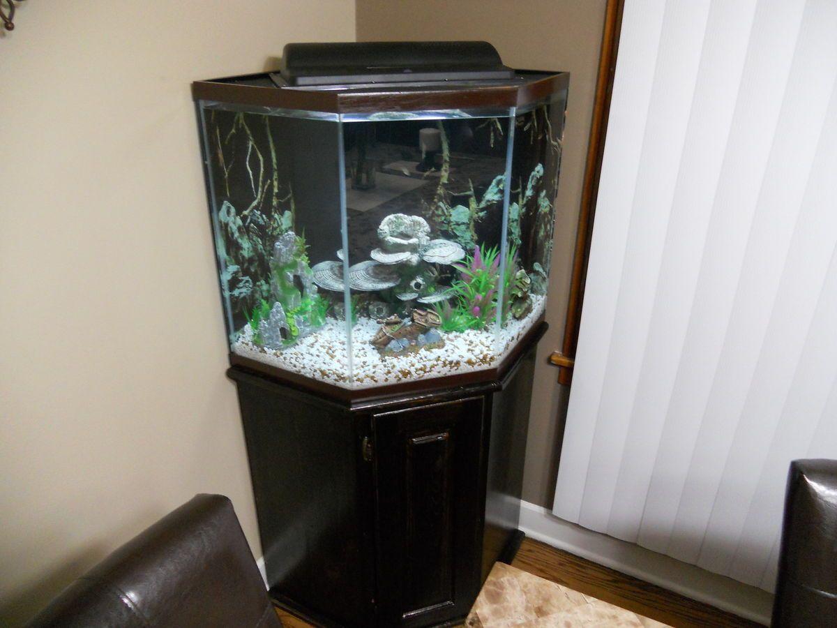 44 Gallon Corner Aquarium Fish Tank Akvariumnyj Stend Dekor Akvariuma Akvariumnaya Rybka