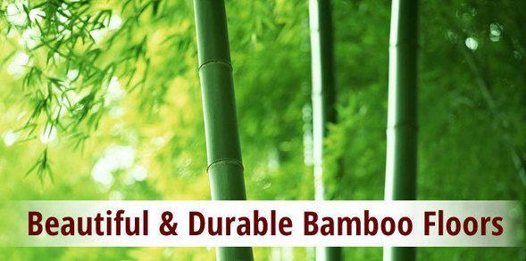 Tips To Overcome 5 Common Bamboo Flooring Problems Floor Sanding And Polishing Adelaide Bamboo Flooring Flooring Bamboo