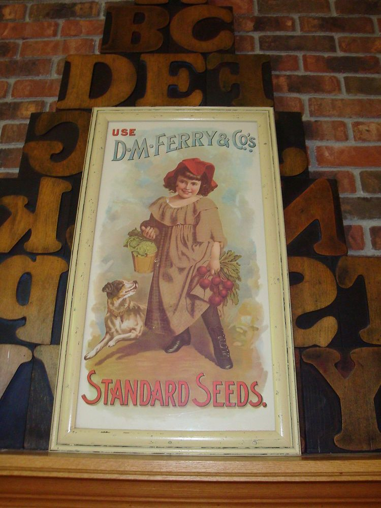 Vintage D.M. Ferry & Co. Seed Company Framed Advertising Poster ...
