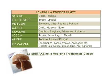 Lo SHIITAKE nella Medicina Tradizionale Cinese-page0001