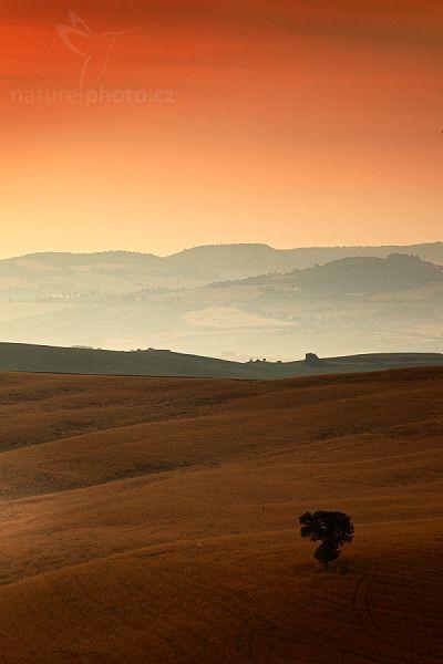 Tuscany - Autor: Ondřej Prosický