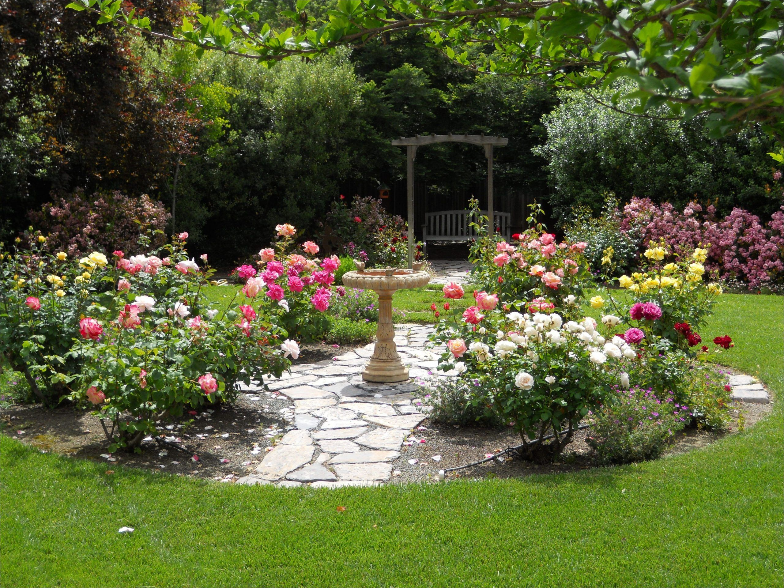 Simple Design Ideas Rose Garden Plans Flowers Ideal Small ...