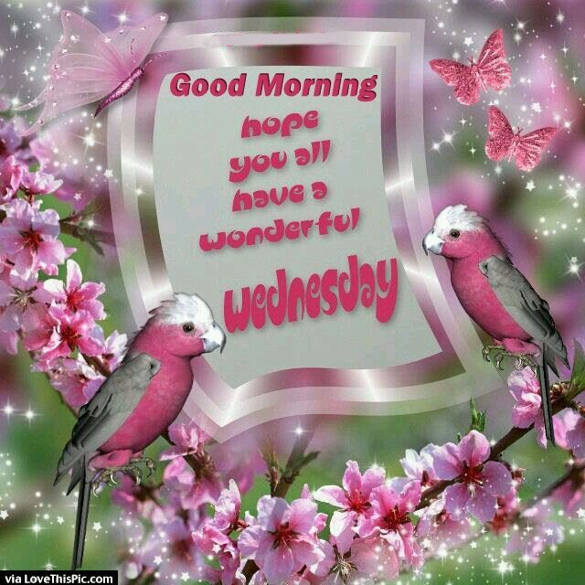 Good Morning Hope You Have A Wonderful Wednesday Good Morning