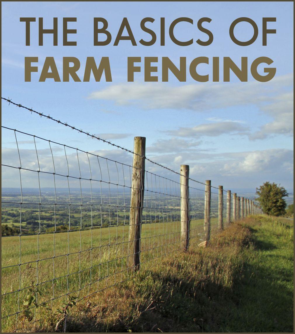 fence in place by kitliz, via Flickr | Gardening | Pinterest | Wire ...