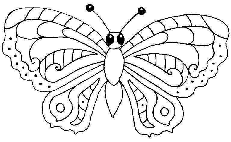 Coloriage papillon des coloriages d 39 animaux et de - Coloriage d animaux ...