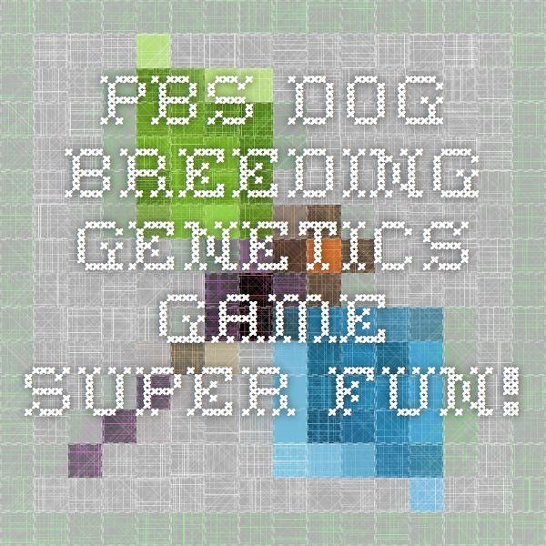 Pbs Kids Dog Breeding Game