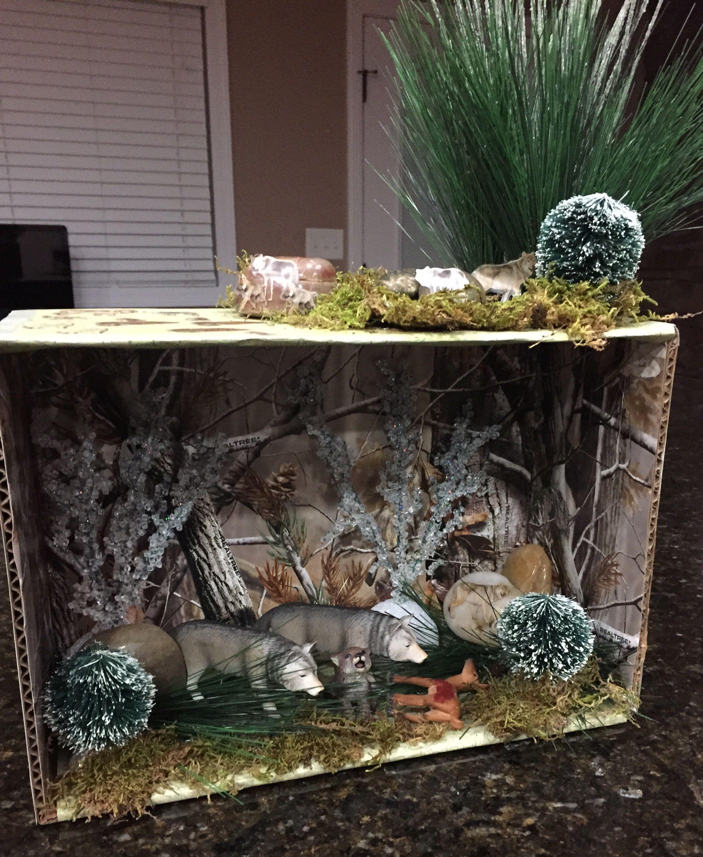 Wolf Habitat Diorama