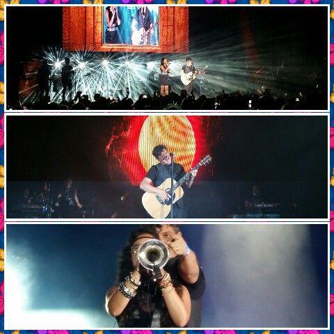 Concierto de Alejandro  Sanz  ..festival Starlite   2014..Marbella aforo  lleno.. los fans locos