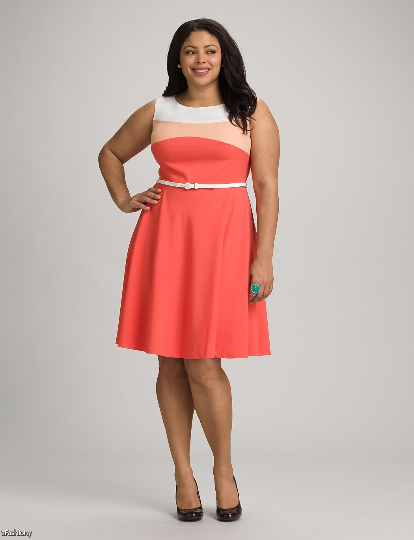 dress barn dresses plus size choice image - dresses design ideas