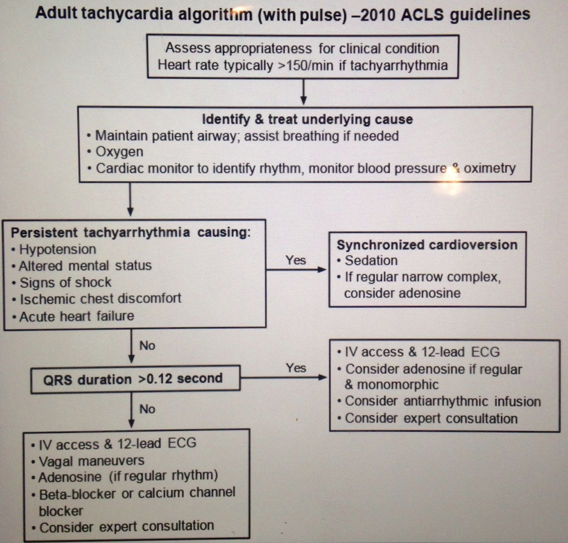 Acls Management Of Tachycardia This Applies To Patients With