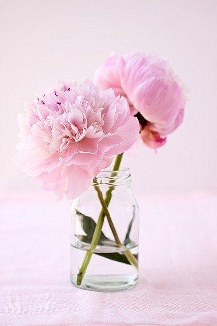 Flowers in a vase pinterest flowers beautiful flowers flowers in a vase mightylinksfo