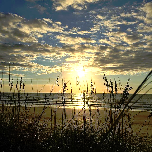 Myrtle Beach State Park Myrtle Beach South Carolina