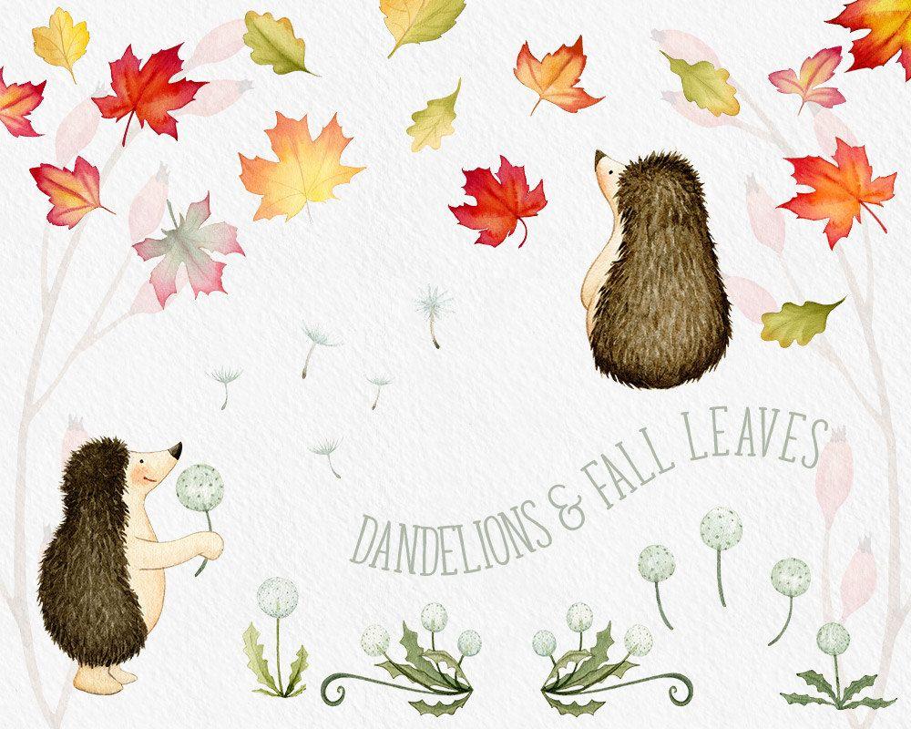 Fall Clipart Hedgehog Clipart Autumn Clipart Fall Leaves Clipart