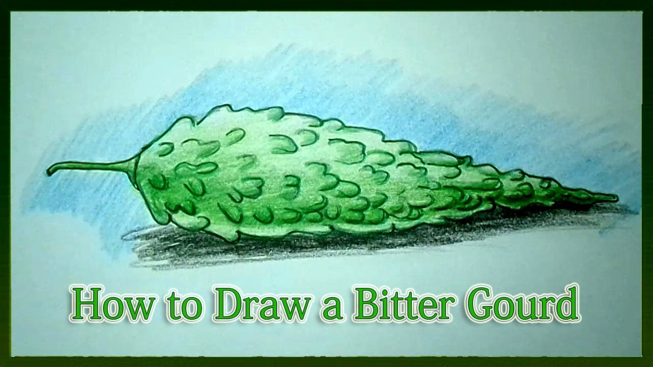 how to draw a bitter gourd step by step rishuka pinterest